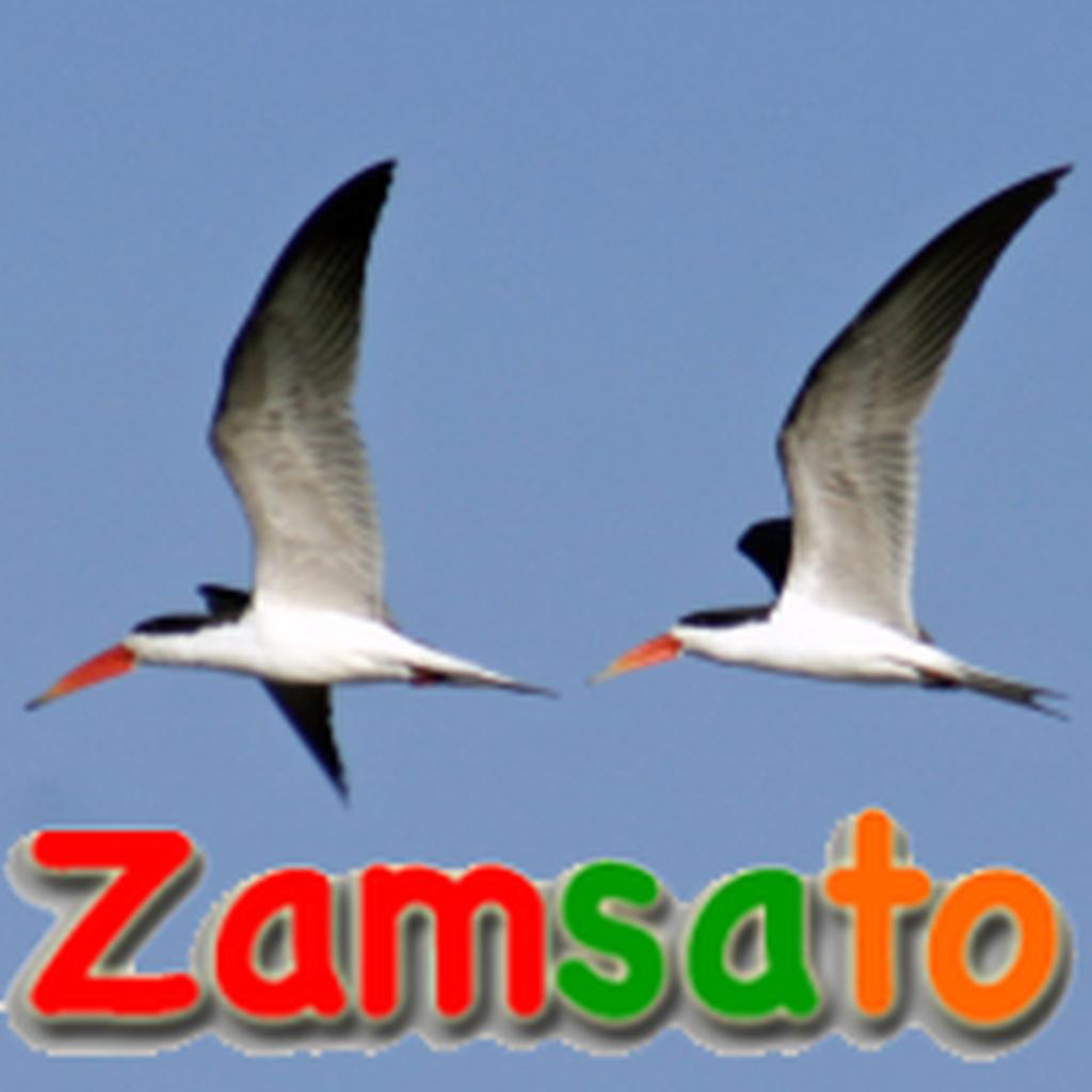 ZAMSATO